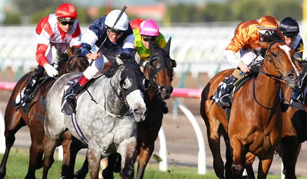 Makybe Diva Stakes - Melbourne Racing Carnival