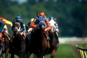 Melbourne Racing Tips review
