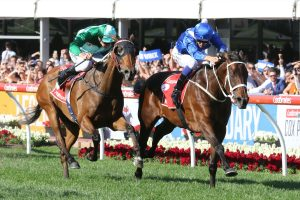 Winx and Melbourne Racing tips