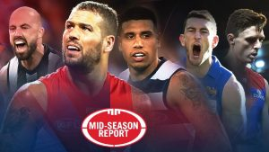 AFL Betting Tips - mid season review week 3